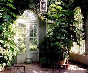 house, nature, and plants image