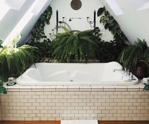 plants, home, and bathroom image