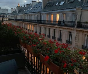 architecture, flowers, and france image