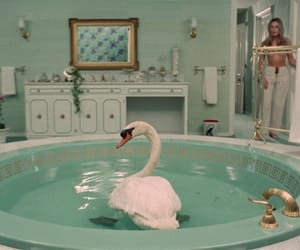 Swan, aesthetic, and movie image