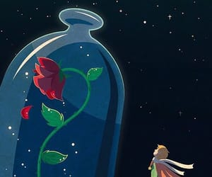 wallpaper, the little prince, and rose image