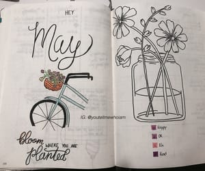 bike, bloom, and draw image