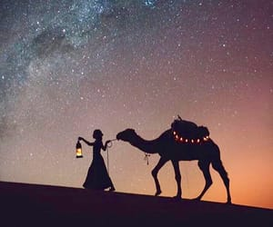 camel, dreamy, and girl image