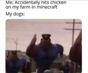 dogs, funny, and me image