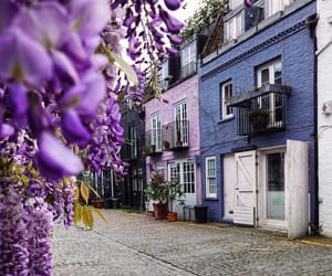 blue, flowers, and london image