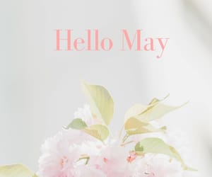 flower, hello, and may image