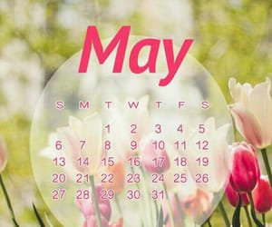 calendar, flor, and monthly image