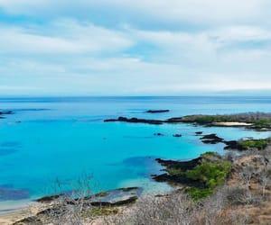 blue, galapagos, and nature image
