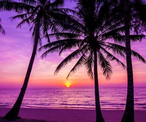 beach, sun, and pink image
