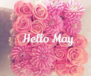 may, flowers, and month image