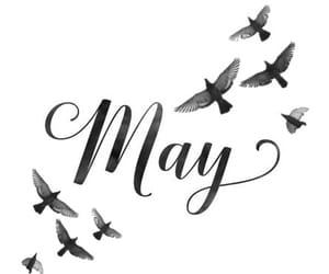 may, words, and month image