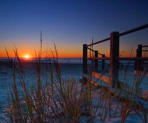 beach, boardwalk, and hammock image
