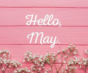 flowers, may, and month image