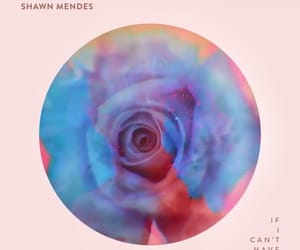 music, release, and shawn image
