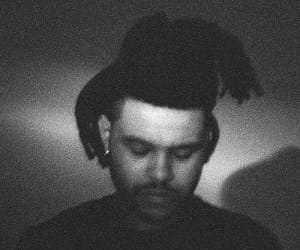 the weeknd, xo, and theweeknd image