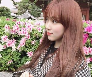 izone, hkt48, and yabuki nako image