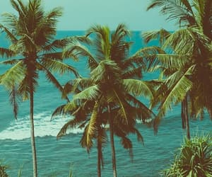 hawaii and travel image