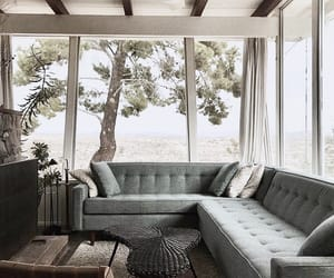 couch, home, and interior image