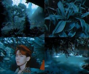 aesthetic, exo, and baekhyun image