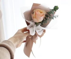 Blanc, bouquet, and brown image