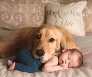 baby, dog, and outfit image