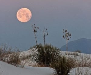 moon, nature, and sand image