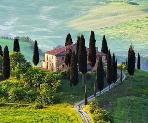 Tuscany, italy, and nature image