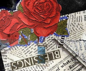 edit, roses, and smh image