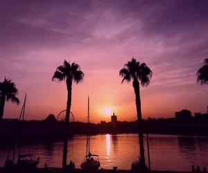 palms, sky, and sunset image