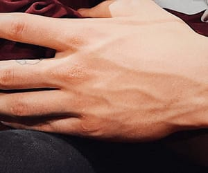 details, shawn mendes, and hands image
