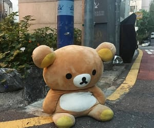 bear, rilakkuma, and aesthetic image