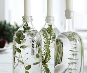 candle, bottle, and plants image