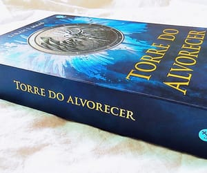 livros, queen of shadows, and tower of dawn image