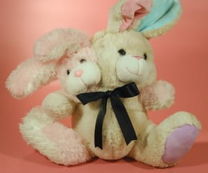 bunny, grunge, and cottagecore image