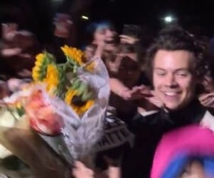 flowers, hs1, and Harry Styles image
