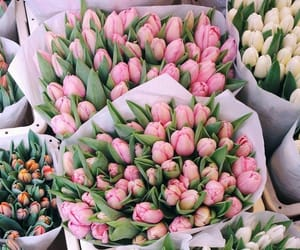 flowers, beautiful, and girly image