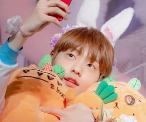 boys, bunny, and icons image