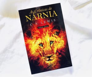 book, the chronicles of narnia, and love books image