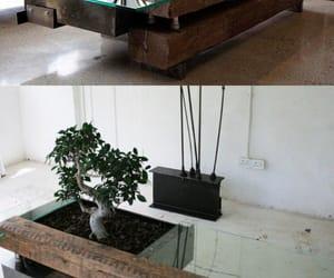 bonsai, livingroom, and coffeetable image