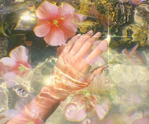aesthetic, flowers, and water image