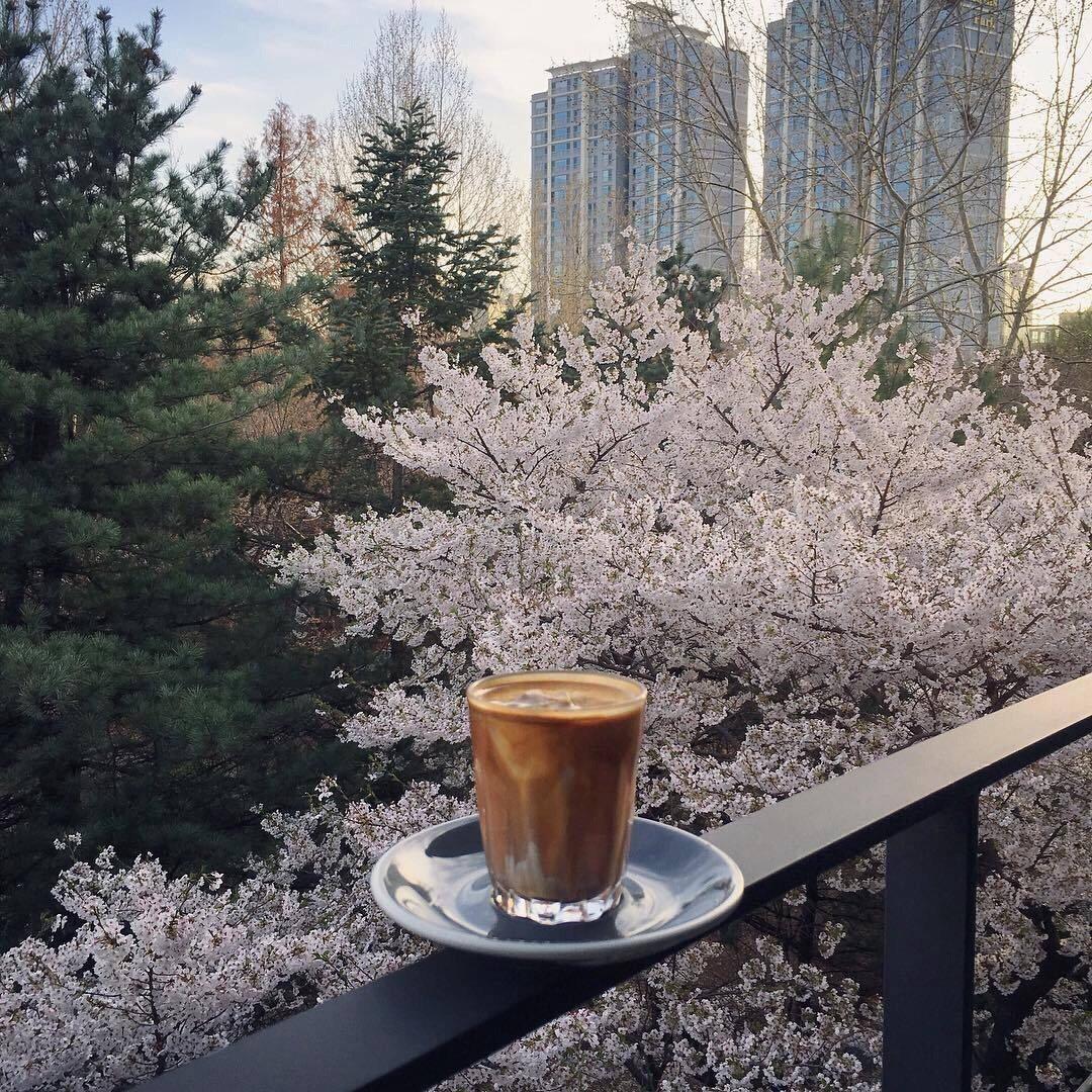 balcony, coffee, and drink image