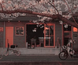 aesthetic, japan, and cafe image