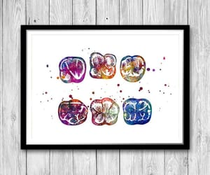 dentist, surface of molar, and etsy image