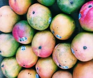mango and summertaste image