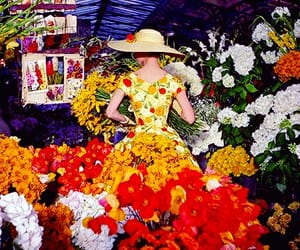 audrey hepburn, flowers, and funny face image