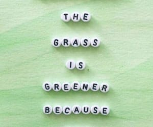 quotes, green, and grass is greener image