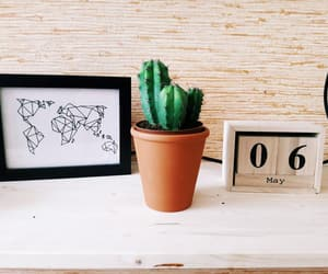 art, map, and cactus image