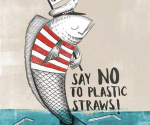 straw, zero waste, and plastic free image