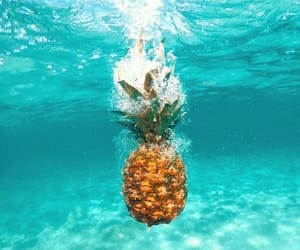 pineapple, summer, and ocean image