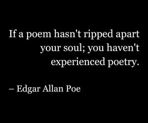edgar allan poe, phrase, and poem image